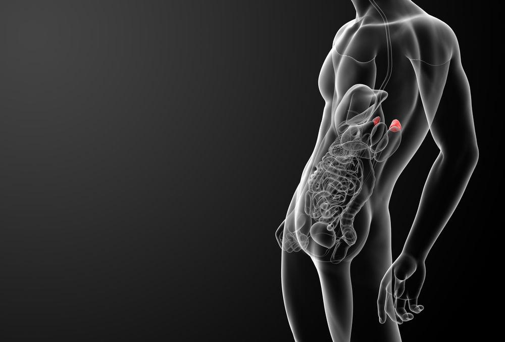 Nebennierenerschöpfung ist die Wurzel vieler Krankheiten ...