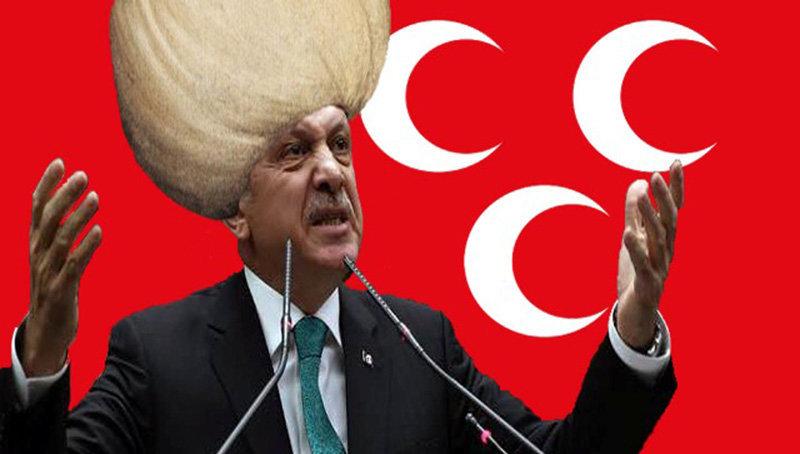 Ziege Erdogan