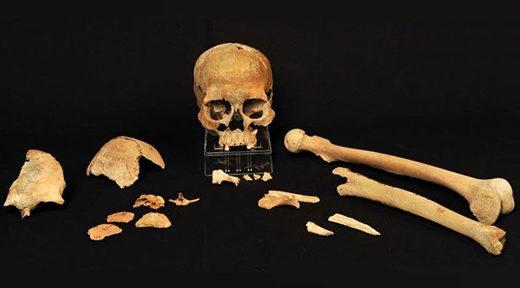 Knochen von einem der steinzeitlichen Skandinavier, deren DNA analysiert wurde. Das Skelett stammt aus dem Südwesten Norwegens.