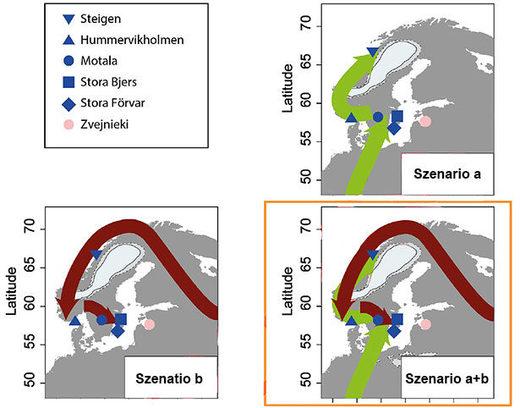Einwanderungsrouten nach der letzten Eiszeit: Von Nordosten kam eine Volksgruppe, aus Mitteleuropa eine andere. In Skandinavien mischten sie sich.