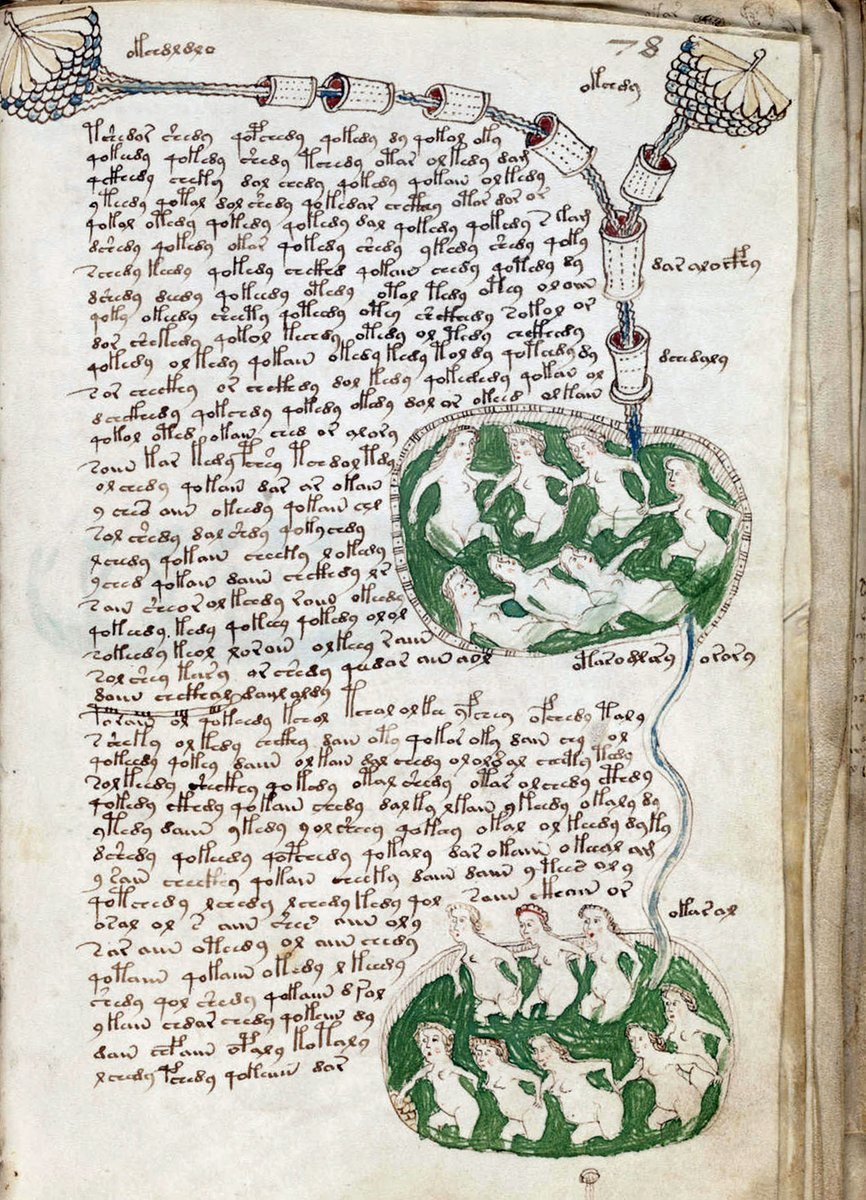 Das Voynich-Manuskript