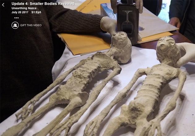 Online-zucker mumien aus