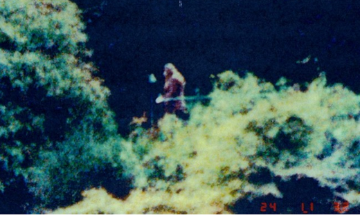 Foto Bigfoot Sasquatch Wohola 1986