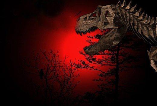 Kohlenstoffdatierung und Kreationismus