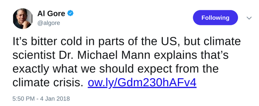 Al gore tweet snow is global warming
