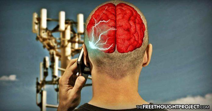 Gesundheit ist egal: Deutschland verdient mit dem Verkauf von 5G-Frequenzen 6,6 Mrd. Euro