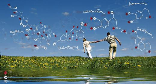 Chemie Bedeutung in Beziehung
