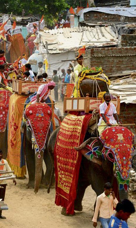 indiens misshandelte tempelelefanten indiens und deren angriffe auf menschen das kind der. Black Bedroom Furniture Sets. Home Design Ideas