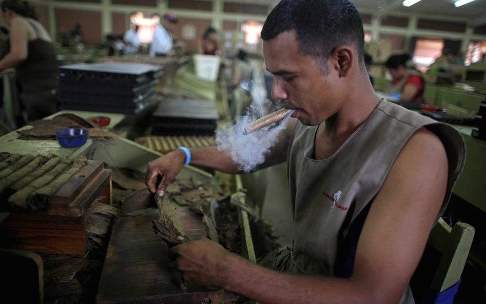 Anbau Von Bio Tabak Und Herstellung Hochwertiger Zigarren In