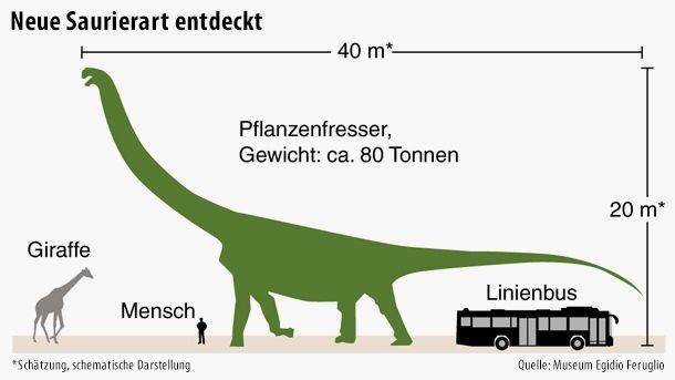 Größter Dinosaurier Aller Zeiten Entdeckt Die Unglaublichen Zahlen